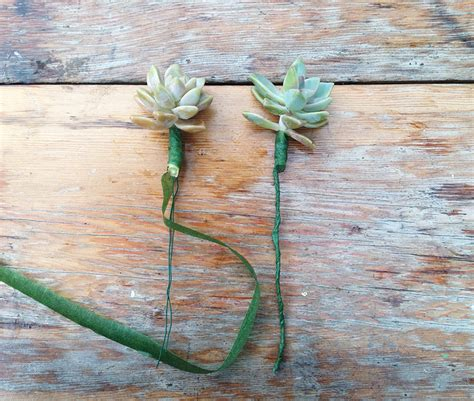 succulents and roses diy wedding bouquet design