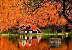 Rest, Fiery, River, Cottage, Forest, Lake, Foliage, Mirrored, Shore, Autumn, Fall, Season, Nature, Pretty