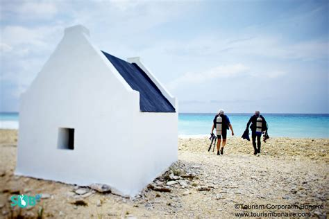 bonaire scuba diving tips logistics dive sites