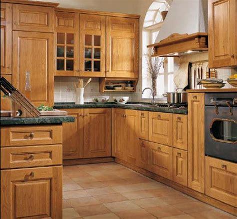 kitchen designs ideas pictures rustic kitchen ideas decobizz com