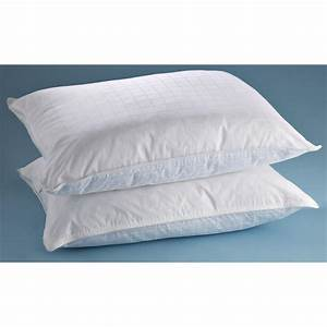 2 pk sleepliner feather and down pillows with zip With best non feather pillows
