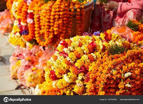 fiore di zafferano fiori di zafferano nepal foto stock 169 svideo13 mail ru