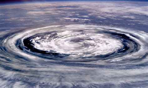 台風 の たまご 最新 情報