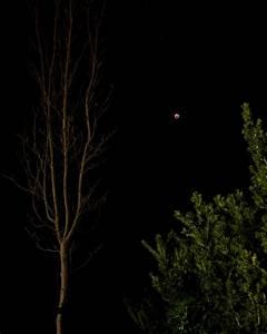 Last Night U0026 39 S Lunar Eclipse Aka Super Blood Moon  Gcam