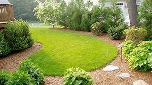 Backyard, Landscaping, Ideas