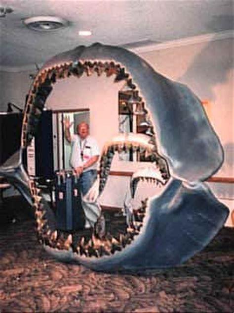 le plus grand escalier du monde le plus grand requin du monde au lieu de juger connaissez vous cet animal au