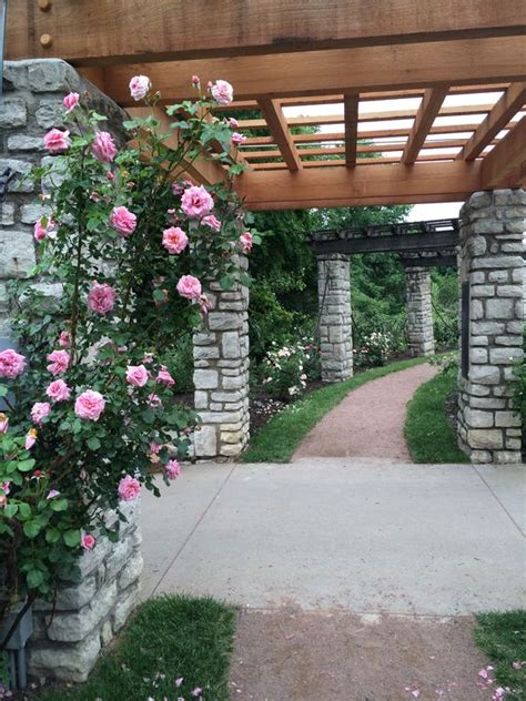 roses garden parks and roses on