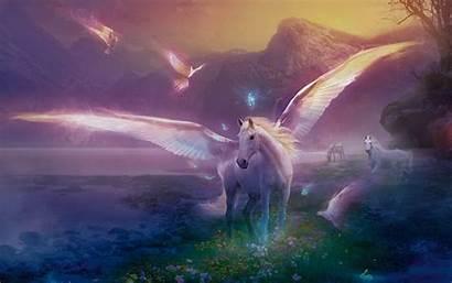 Pegasus Desktop Wallpapers Background Definition Fantasy Apothecary