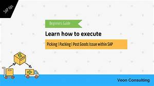 Sap User Manual For Picking  Packing  U0026 Post Goods Issue