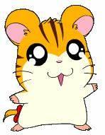 Best Wallpapers: Sandy : Hamtaro Character