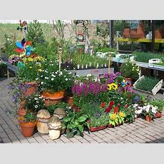 Gartenmarkt, Gartenerde, Pflanzen, Haushaltswaren Und