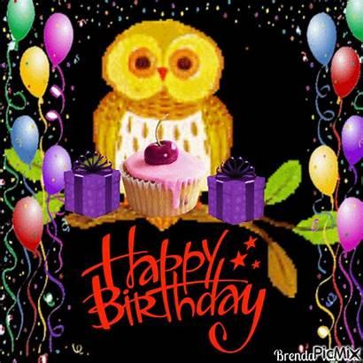 Birthday Happy Owl