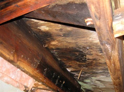sagging floors a crawl space