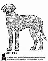 Coloring Dane Pages Dog Template Bold Books Colouring Theblissfuldog Link Danes Puppy Colors Labrador Cute Colour Dogs Adult sketch template