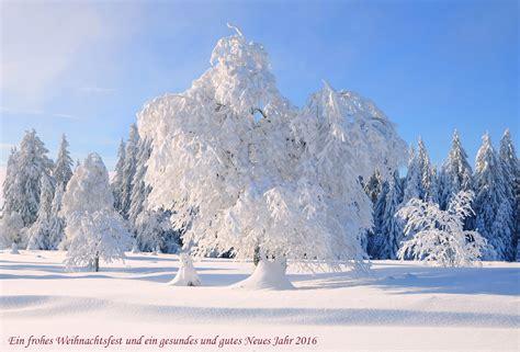 winter im schwarzwald forum fuer naturfotografen