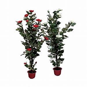 Pot De Fleur Transparent : rose bush clipart shrub plan pencil and in color rose bush clipart shrub plan ~ Teatrodelosmanantiales.com Idées de Décoration