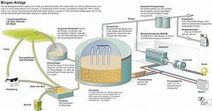 Photovoltaikanlage Berechnen : nutzungspfade biogas planet biogastechnik ~ Themetempest.com Abrechnung