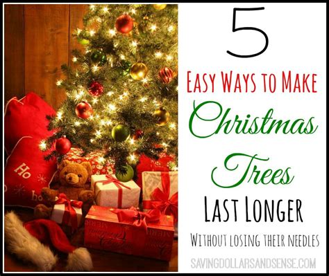 how to make christmas trees last longer saving dollars sense