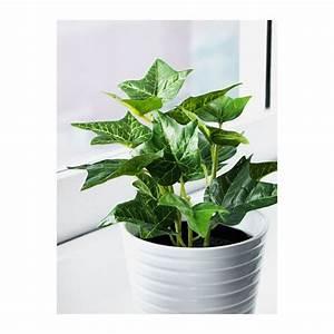 Pot Fleur Ikea : fejka plante artificielle en pot diverses esp ces plantes en pot lierre et pots ~ Teatrodelosmanantiales.com Idées de Décoration