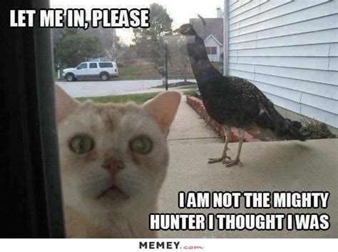 Funny Bird Memes - funny memes funny funny pictures memey com page 8