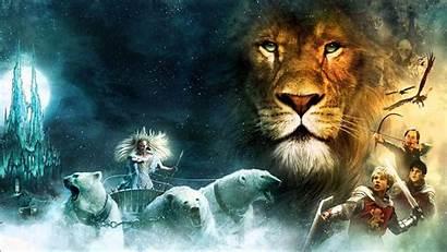 Narnia Lion Chronicles Fantasy Polar Disney Bear