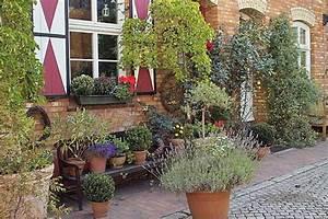 Garten Mediterran Gestalten Bilder : kleiner garten mediterran gestalten vorgarten anlegen diese pflanzen sind ideal nowaday garden ~ Whattoseeinmadrid.com Haus und Dekorationen