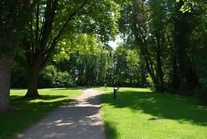 Free Images : landscape, tree, path, plant, trail, bridge ...