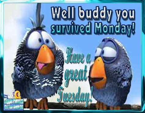 We Survived Monday Have A Great Tuesday Pictures, Photos