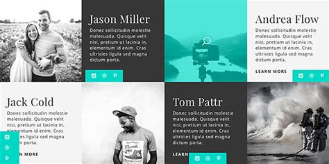 divi layout packs    web
