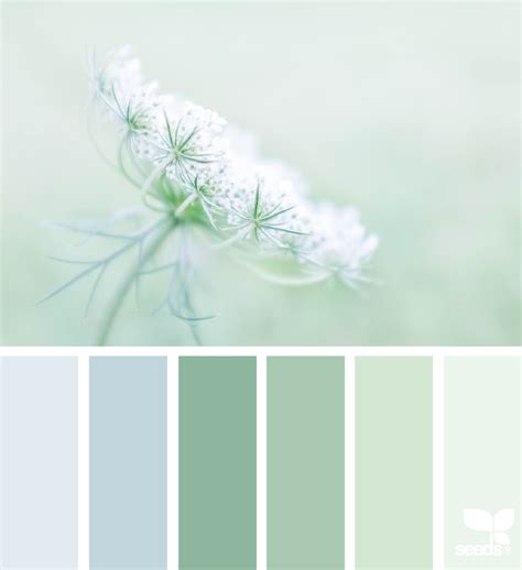 very light mint green paint color nature design seeds