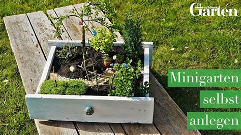 Mini Gärten Gestalten by Bastelanleitung Minigarten Selbst Anlegen