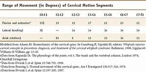Functional Anatomy Of The Cervical Spine