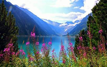 Mountain Flowers Lake Nature Wallpapers Landscape Mountains