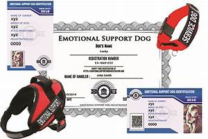 emotional support dog registration standard