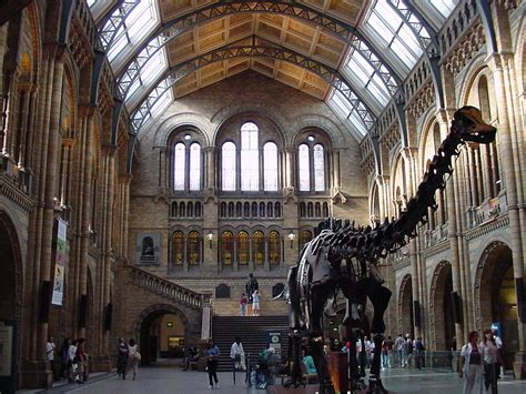 Natural History Museum Cultural Attractions In London