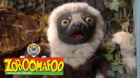 Zoboomafoo Closet by Zoboomafoo 219 And Clean Episode
