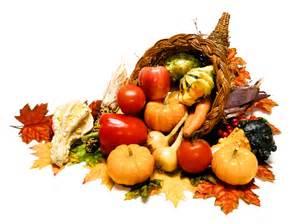 autumn market culinary blossom