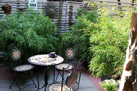 Pflanzen Als Sichtschutz Für Terrasse by Sichtschutz Bambus Als Sichtschutz Im K 252 Bel