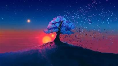 Dark Landscape Sunset Tree Background 1080p Fhd