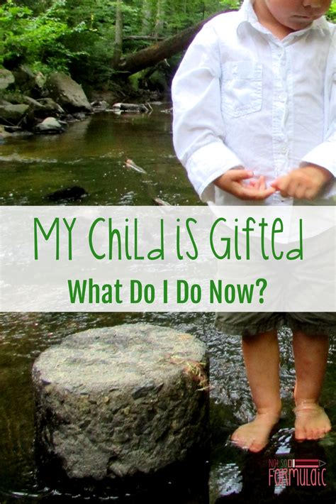 my child is gifted what do i do now 340 | My Childis Giftedpin