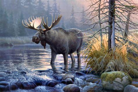 Wildlife Backgrounds For Desktop (62+ Images