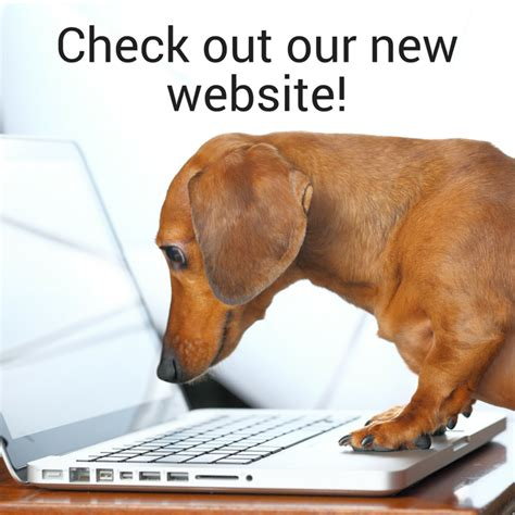 Welcome To The New Packsizecom Here Are 6 Features You. Diesel Mechanic Online Training. Dental Assistant Jobs In San Diego. County Recorders Office Accidents Los Angeles. Business Software For Photographers. Secondary Insurance With Medicare. Accelerated Bachelor Programs. Cdl Training Tennessee Calling Uk From Abroad. Allergic Reaction To Waxing Get Ride Of Ants