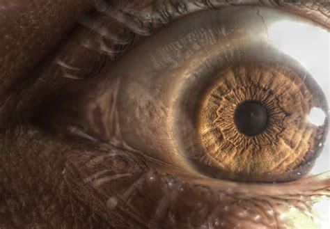 types  eye lenses xcitefunnet