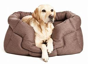 best dog beds for labradors labrador dog beds With best dog beds for puppies