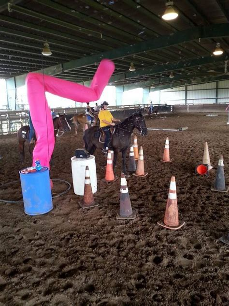 Horse Pool Noodle Obstacle