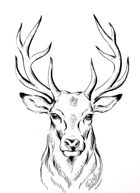 original zeichnung hirsch minimalistische zeichnung bild