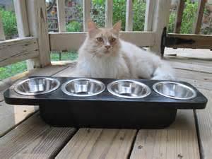 cat feeders elevated pet feeder pet feeder cat feeder by woodytoolworks