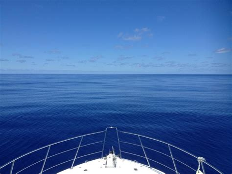 Fishing Boat Charters Cairns by Cairns Private Charter Boat Fishing And Or Snorkelling