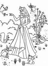 Coloring Aurora Princess Princesa Bela Desenhos Colorear Colorir Princesas Pintar Adormecida Imprimir Dibujo Ariel Disney Dibujos Hada Madrina Activity Disegni sketch template