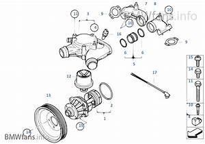 Bmw E36 M3 Cooling System Diagram Html